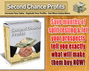 Thumbnail 2nd Chance Profits - an innovative survey with MRR